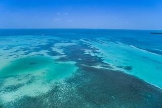 WWF: i siti naturali Patrimonio dell'Umanità sono a rischio