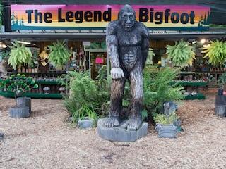 La testa di Bigfoot trovata nello Utah: solo una vecchia bufala