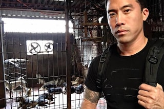 Marc salva 1.000 cani dagli orrori del Festival di Yulin (VIDEO)