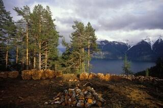 La Norvegia dice addio alle emissioni di gas serra inquinanti entro il 2030