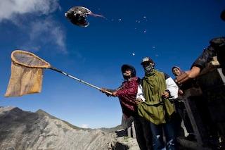 Yadnya Kasada, il festival indonesiano in cui si sacrificano animali vivi nel vulcano