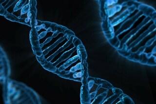 Modificare il DNA per curare i tumori: il 'taglia e incolla' adesso si testa sugli umani