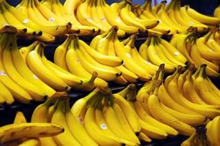 Che mondo sarebbe senza banane? Entro 5 anni potremmo scoprirlo