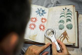 Il manoscritto Voynich e il mistero di una truffa ben elaborata