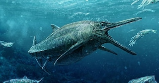Un mostro giurassico scoperto in Scozia