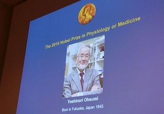 Il premio Nobel per la fisiologia o la medicina a Yoshinori Ohsumi