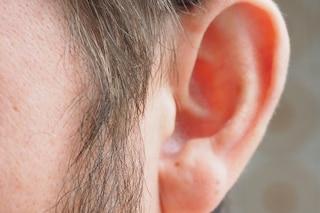 Scoperto come combattere la perdita dell'udito con le cellule staminali