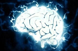 Sesso e paura, così il cervello frena i nostri istinti più profondi