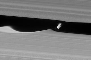 Cosa sono le onde formate da Dafni, il satellite di Saturno? Lo scatto inedito della NASA
