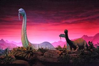 Al freddo e al buio: così i dinosauri morirono lentamente