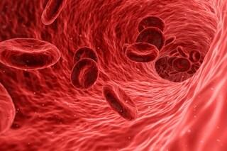 Scienziati italiani scoprono il meccanismo che scatena la trombosi nei pazienti con coronavirus