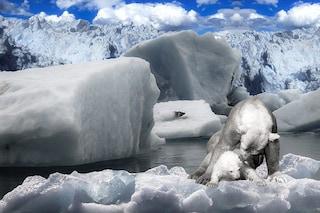 Il 'folle' piano per salvare l'Artico: ricongelarlo con 10 milioni di pompe eoliche