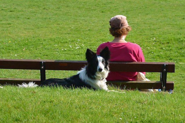 Scoppia la polemica: un bimbo curato con la saliva di un cane la rabbia
