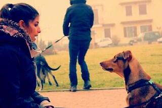 Guardati allo specchio! Se il tuo cane è mezzo matto è colpa tua: ecco perché