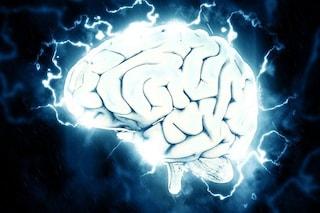 Scoperta la 'mappa del terrore' nel cervello: ecco come rievochiamo i brutti ricordi