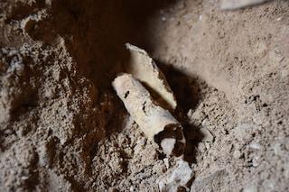 'Corsa contro il tempo', archeologi scoprono la dodicesima grotta dei Rotoli del Mar Morto