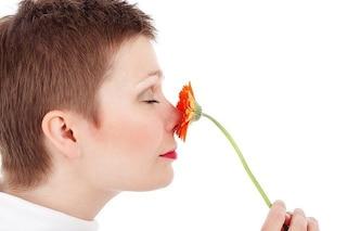 Strano ma vero: attrazione sessuale e clima modificano la forma del nostro naso