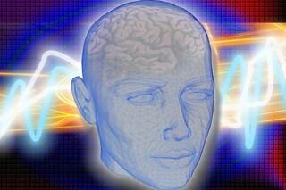 """Cinque falsità sul cervello che devi """"sbufalare"""""""