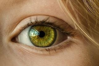 È italiana la prima retina artificiale organica che ridà la vista: come funziona