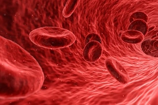 """C'è una nuova """"fabbrica"""" di sangue nel corpo umano: ecco dove è stata scoperta"""