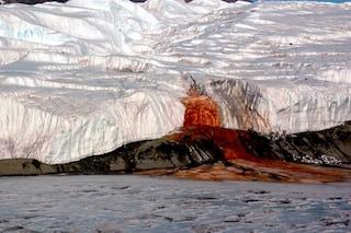 Il segreto delle 'Cascate di sangue' si nasconde da 1 milione di anni nel ghiacciaio Taylor
