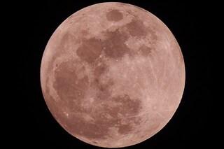 La Luna piena Rosa illumina il cielo di aprile e 'bacia' Giove: quando e come vederla