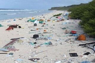 Giornata della Terra: uniti per dire 'no' alla plastica