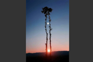 La foto della Luna piena col Sole al tramonto: ecco perché si tratta di un fake