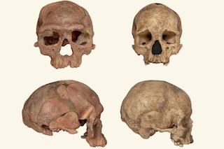 Riscritta l'origine della nostra specie: l'Homo sapiens è più antico di 100mila anni