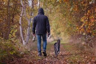 Camminare allunga davvero la vita: 2 ore di passeggiata a settimana riducono il rischio morte