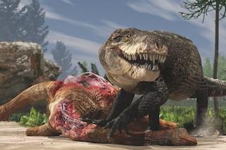 Il coccodrillo gigante con i denti del T-rex: chi era il Razana