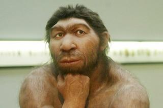 Neanderthal, denti fossili di 450mila anni trovati in Italia riscrivono la storia