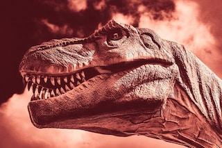 Estinzione dei dinosauri, l'impatto dell'asteroide provocò due anni di oscurità e gelo
