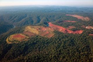 Foresta Amazzonica, dramma senza fine: in un anno persi 7.900 chilometri quadrati
