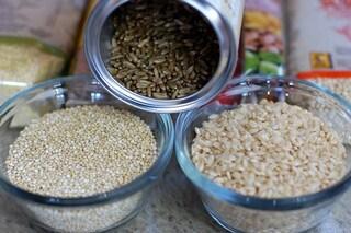 Cancro al colon-retto, mangiare 90 grammi di cereali integrali al giorno riduce il rischio
