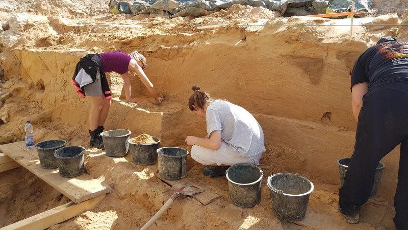 Il sito di scavo dove è stato trovato il dente fossile