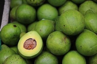 Il potassio protegge il cuore: perché banane, avocado e patate fanno bene alle arterie