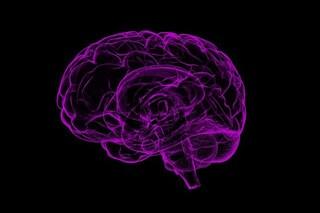 Nel cervello abbiamo la 'fogna': scoperto un nuovo sistema che elimina i rifiuti