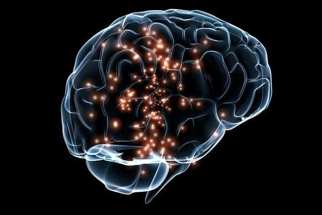 Scienziati scoprono una proteina che può aiutare a cancellare i brutti ricordi