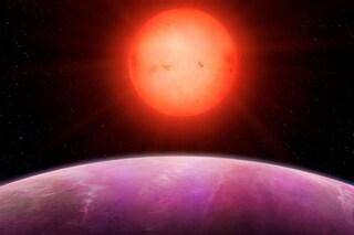 Il gigante caldo e la nana rossa, scoperta la coppia più rara dell'Universo