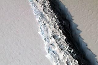 Un ecosistema incontaminato sotto questo mega iceberg: corsa contro il tempo per studiarlo