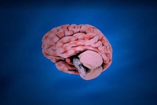 Droge psichedeliche testate su mini cervelli: come possono curare la depressione