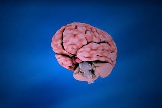 Il segreto della schizofrenia: cosa succede quando 'sentiamo le voci'