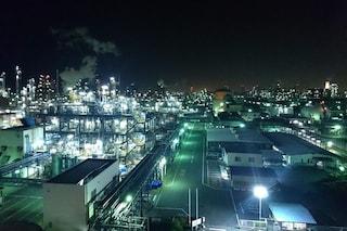 Il lato oscuro dell'inquinamento luminoso: cancro per l'uomo e agonia per gli animali