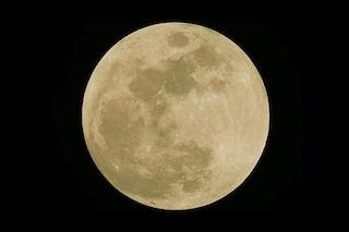 Perché l'arrivo dei lombrichi segna la nascita della Luna piena di marzo