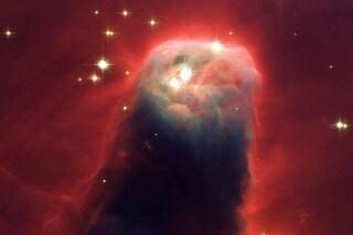 La vita viaggia nell'Universo tra la polvere di stelle: così abbiamo avuto inizio