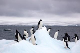 Antartide cambia forma: italiano scoprono come il vento sta modificando il Polo Sud