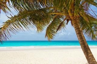 Addio ai Caraibi: abbiamo rovinato anche l'acqua cristallina che ci ha fatto sognare