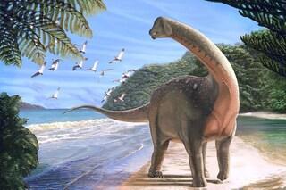 Questo dinosauro appena scoperto svela un antico legame tra Africa e Europa: ecco chi era