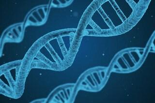 Editing genetico, dall'Italia una svolta storica: creata arma che elimina solo il DNA malato